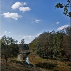 Natuurgebied Wolfheze