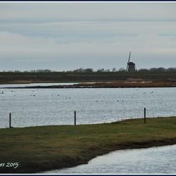 Drijvers Vogelweid de Bol, Texel