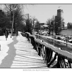 Rotterdam in de winter