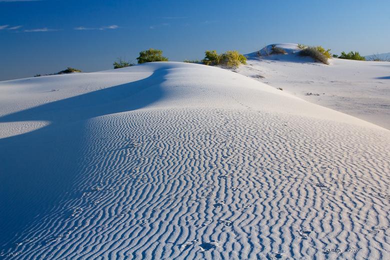 Witte woestijn - White Sands NP is een woestijn met alleen maar wit zand in de USA.