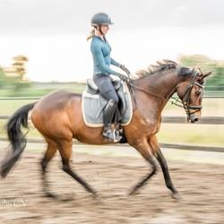 Panning van mijn paardje met ruiter