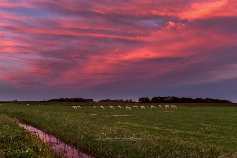 roze luchten - Tessels landschap