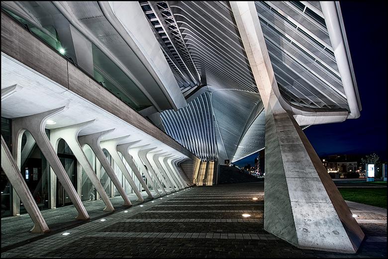 Guillemins 03 - Er zijn architecten die het voor elkaar weten te krijgen om hun gebouwen toch net wat meer mee te geven. Zo ook het station Guilimin i