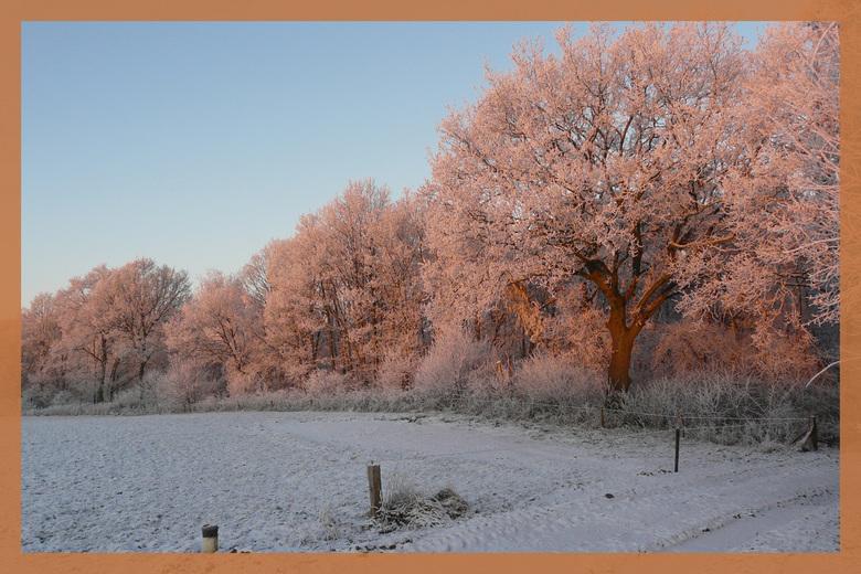 Wit Goud - afgelopen zaterdag vroeg uit de veren om een hele serie foto's te maken van de prachtige natuur. Deze foto gemaakt bij zonsopkomst. De