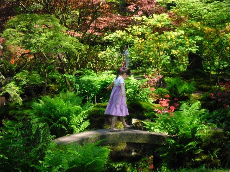 japanse tuin met klein meisje - genomen in de Japanse tuin in den haag. een Aziatisch meisje loopt speels over een bruggetje. camera: Samsung ES9.