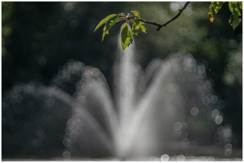 Fountain -