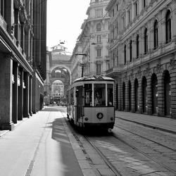 Milanese tram
