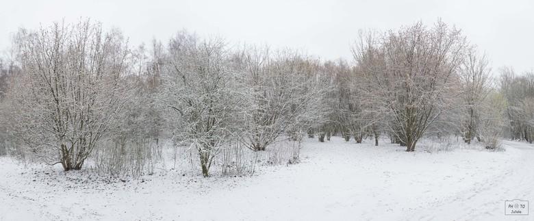 Sneeuw in België (2) - Een sprookjes landschap...