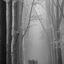 Wandelaars in zwartwit