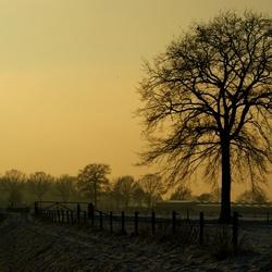 winter in belfeld