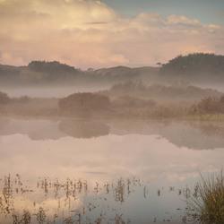 Dreaming Dawn
