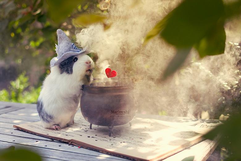 """Love potion - Mieps aan het brouwen in de achtertuin. <img  src=""""/images/smileys/smile.png""""/>"""