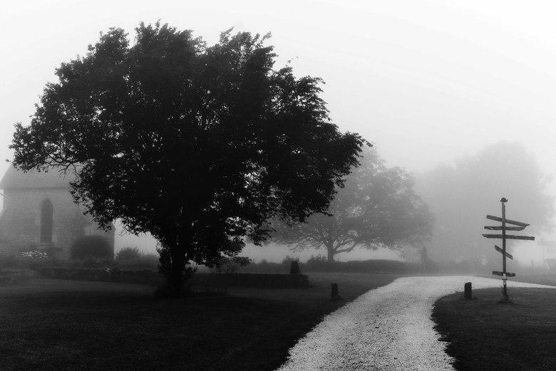 On a misty morning... -
