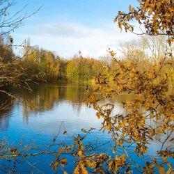 Herfst aan het meer