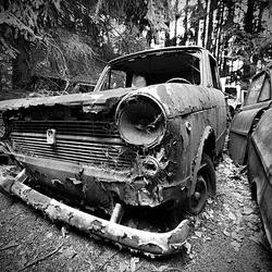 Car Graveyard 7