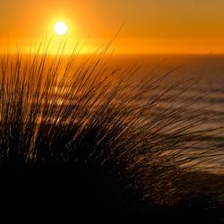Portsea sunset