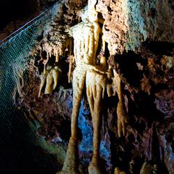 Jules Het skelet van St-Cézaire