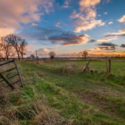 Wetlands near Nijmegen, The Netherlands