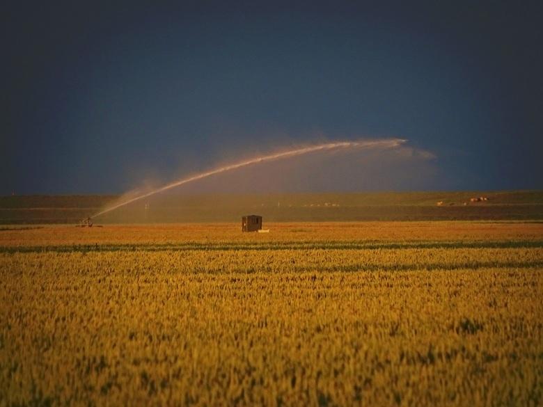 Droogte - Zon in de rug, een wegtrekkende bui en een boer die nog geen water genoeg heeft gehad.