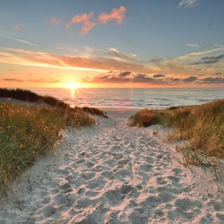 Texel strandopgang paal 22