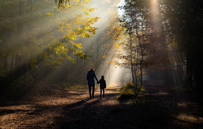 morning walk - wat een heerlijke ochtend, deze keer eens met mijn gezin op pad geweest. Prima te combineren, lekker wandelen met zijn alle en ik tusse