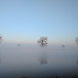 Mist - Maas