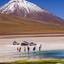 Woestijn Bolivia