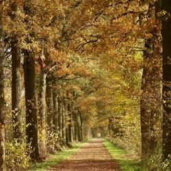 Het Brabants Landschap