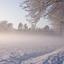 Winter bij Elburg