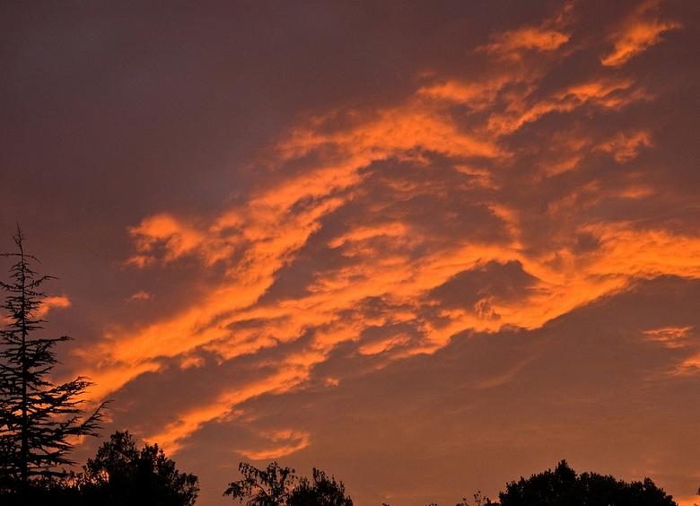 """Zonsondergang - Dit is gewoon een zonsondergang en geen bosbrandje <img  src=""""/images/smileys/wilt.png""""/>"""