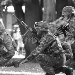 Landmachtdagen 2015 (1)