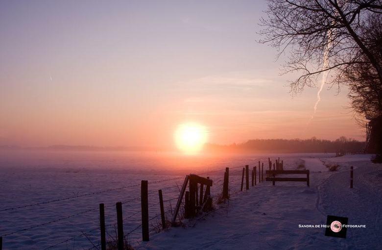 Zonsondergang besneeuw weiland