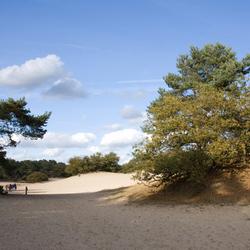 loon en drunense duinen
