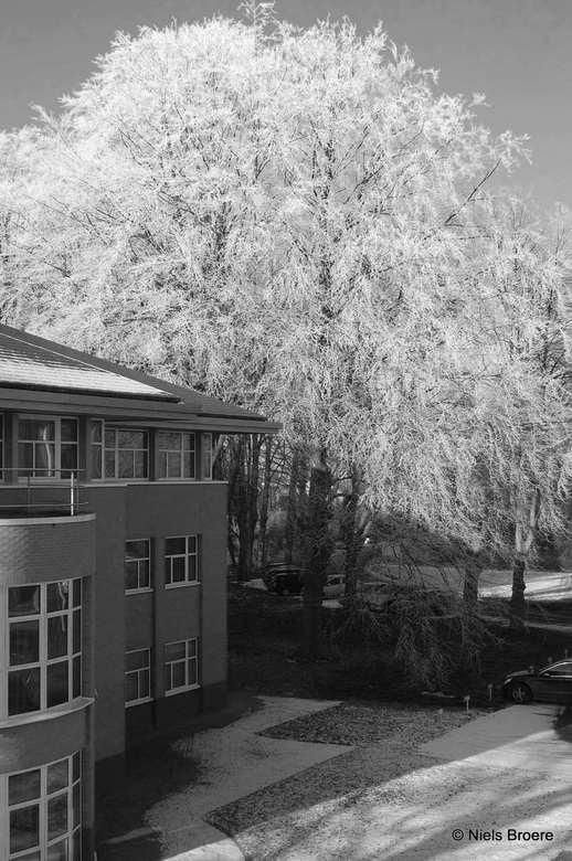 Uitzicht op het werk - Tijdens mijn lunchpauze even snel geschoten en 's avonds een klein beetje recht getrokken en zwart-wit filter overheen geg