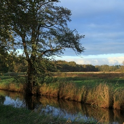 Stroomdallandschap Drentse Aa