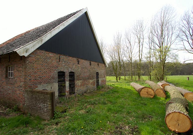 1789 - In april voor mijn werk rondom Winterswijk gereden en dit gespot.