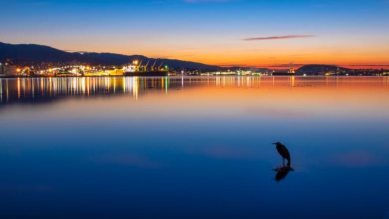 Rust in de twilight - Samen met een reiger genieten van de prachtige kleuren in de lucht en de weerspiegeling op het water in de haven.