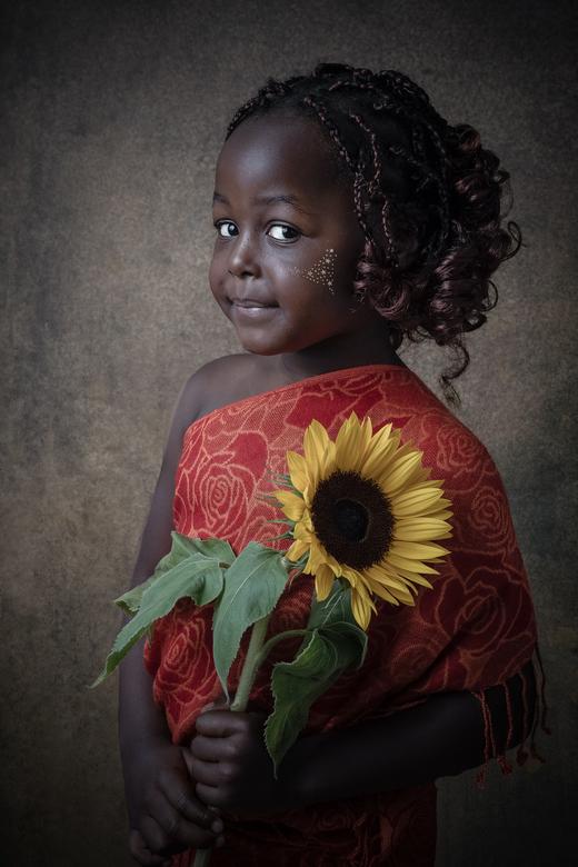Afrikaanse sonneblom -