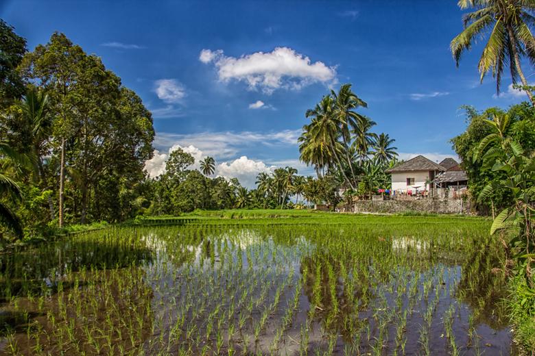 Cycling on Lombok - part two (Indonesia) - Op Lombok heb ik een erg mooi mountainbike tocht gemaakt in de buurt van Sengigi. De tocht leidde ons door
