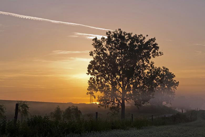 Hongarije 38 - Mist en ochtendlicht