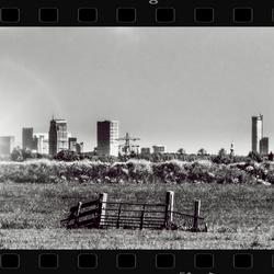 Midden delfland zicht op Rotterdam.