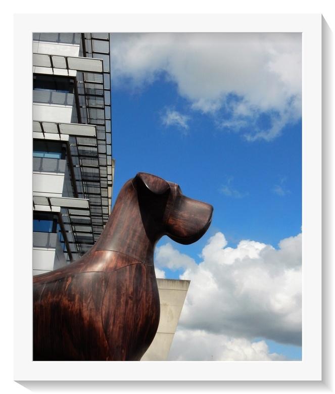 Mannes . .  - ASSEN - De stations hond.<br /> De zes meter grote hond die &quot;waakt&quot; over het stationsgebied.<br /> <br /> Zelden schijnt ee