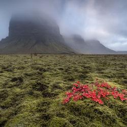 Lonely Peak