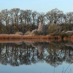 Reflectie in Uddelermeer