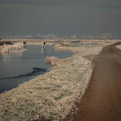 Eilandspolder winter eind 2007 3