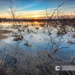 Een prachtige ochtend in de Hollandse delta
