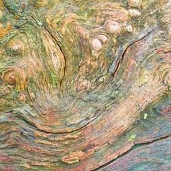 van Gogh Abstract