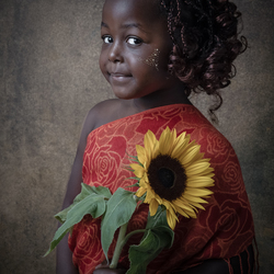 Afrikaanse sonneblom