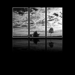 Elspeet drieluik black and white
