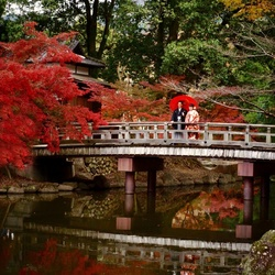 Nara Wedding